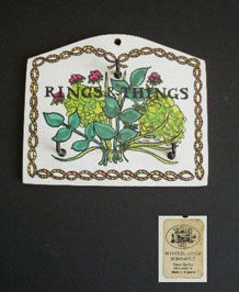 TAUNTON VALE RINGS AND THINGS MELAMINE  HOOK HOLDER IN HERB DESIGN