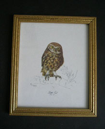 MALCOLM GREENSMITH LITTLE OWL PRINT
